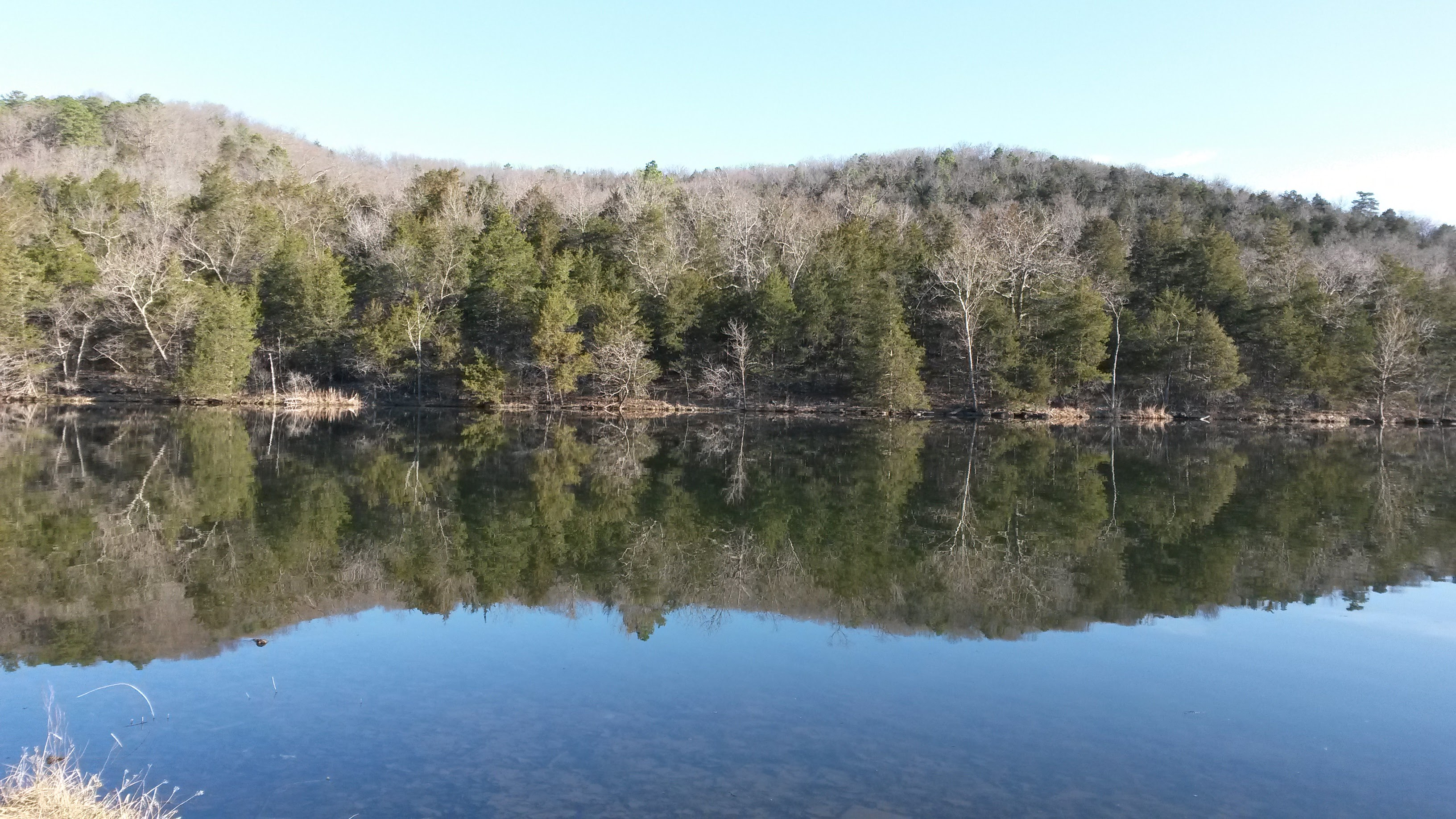The Point at Lake Leatherwood