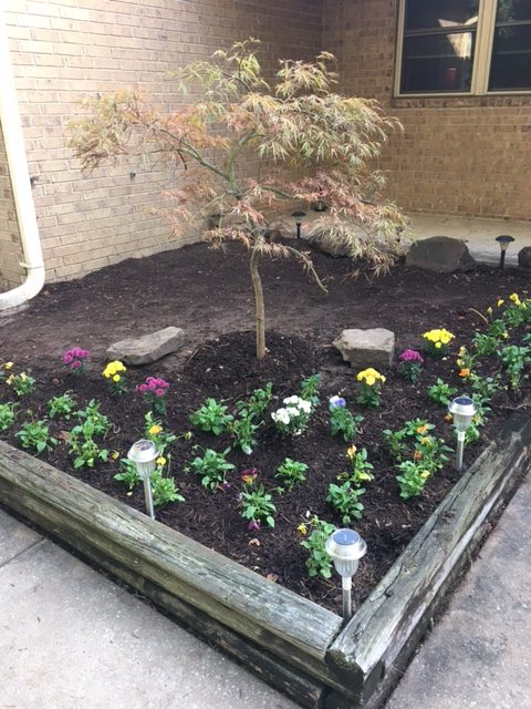 Flower bed with fall color