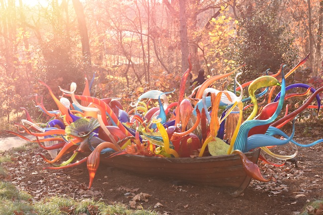 Chihuly in the Forest at Crystal Bridges ends November 27