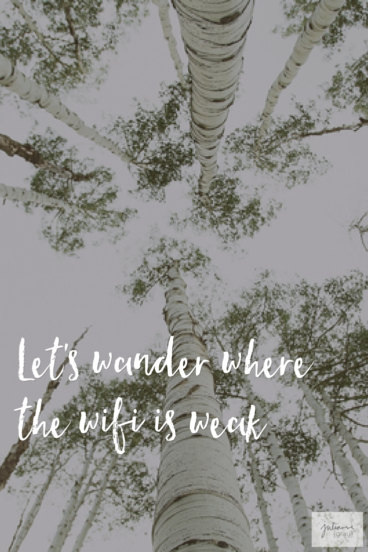 Wander without wifi is weak | julianne {gray}